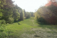 7453-Park-Rehberge_web