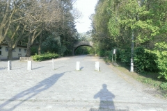 7457-Park-Rehberge_web